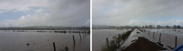 BF flood3 May blog
