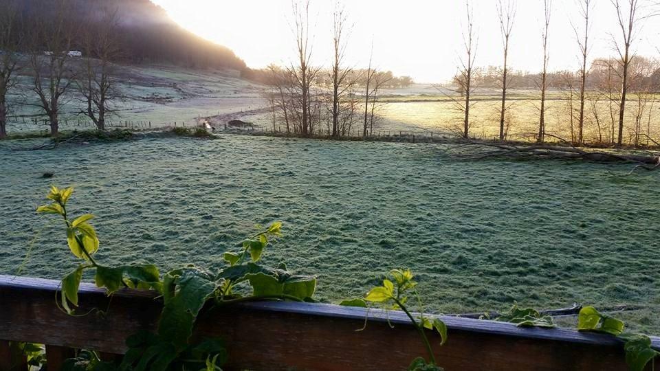 TG friggen frost